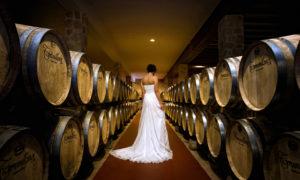 Fotógrafo de boda en exteriores en Burgos