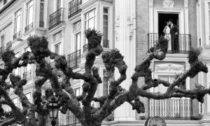 Reportaje fotográfico exteriores de boda en Burgos